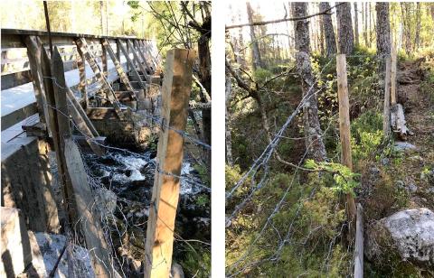 PIGGTRÅD: Bilde av piggtrådgjerdet, som er kjernen i saken mellom bonde Ånen Bruli og Kvinesdal kommune.