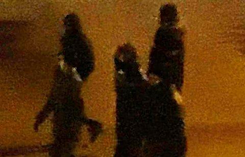 En beboer knipset bilde av gjengen som går rundt i nabolaget i Bodø.