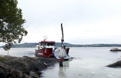 Arbeidsbåten «Frifant» spiller en av hovedrollene, når alt av utstyr skal ut til badeplasser og friområder. Her fra Grønskjeret ytterst i Åstveitvågen.