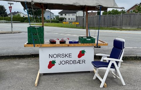 Her på Selbak er det norske jordbær i kurvene  – og prisen er ikke til hinder for salget.