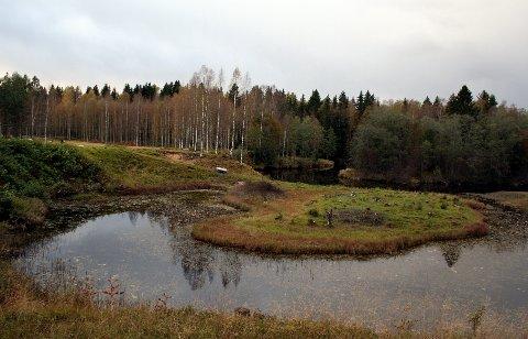 DØD: To unggutter fant liket av den tyske soldaten Willy Jutzi i Vrangselva 6. juli 1942. Dette er Rönningen i Eda - hvor liket av Jutzi fløt i land.