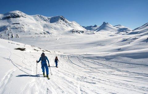Det er først litt nedkjøring fra Leirvassbu før man starter å gå opp til Storebjørn eller Sokse.