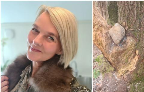 ØYDELAGT: Biletet til høgre viser synet som møtte Lena Marie Andreassen då ho skulle fotgrafera ekorna måndag.