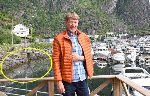 Irritert: Leder i Vågan båt og sjøfiskeforening, Per Odd Krystad er le av at småbåthavna i Marinepollen blir tilgriset av forurensning.