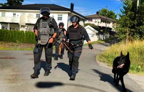 MAKTBRUK: Politiet blir ofte anmeldt for å bruke av unødvendig makt under pågripelse, men blir som regel frikjent av Spesialenheten. Illustrasjonsfoto: Bjørn V. Sandness