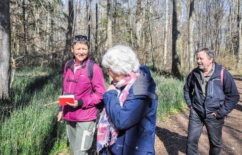 Ønsker vern: Dagny Mandt, Anne Borander og Tor Melseth fra Larvik Botaniske Forening mener skogsområdet ved Lillevik er helt enestående i sitt slag, og burde få et skikkelig vern.