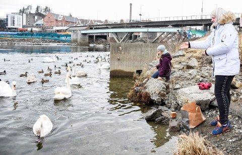TRIVELIG AVBREKK: Karina Zalva og datteren Sofia matet fugler ved Glatved brygge lørdag.