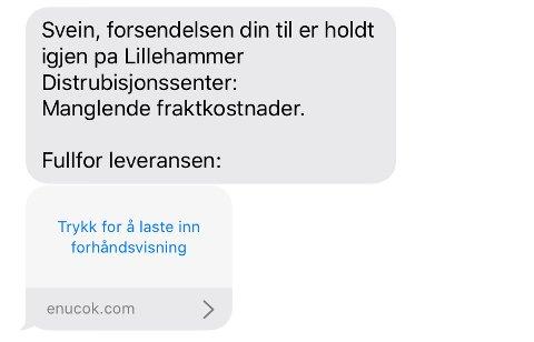 Denne meldingen er det flere som har mottatt fredag formiddag. – Dette er helt klart og tydelig svindel. Ingen tvil. Ikke betal! sier Anne Nystuen Pedersen, daglig leder i Lillehammer distriubusjon AS.