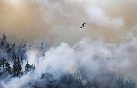 Helikopter slepp vatn på ein brann i Setesdalen i 2018. Foto: Tor Erik Schrøder / NTB scanpix