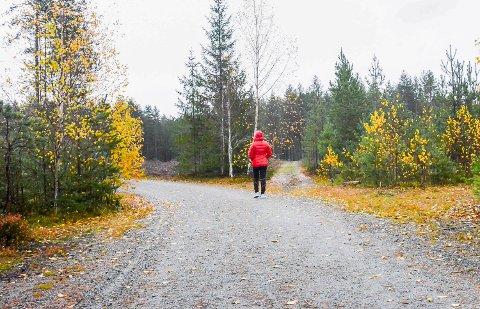 BLOTTING: En mann ble tirsdag observert da han blottet seg og onanerte på Bademoane i Vikersund. Det er ikke første gangen det skjer, og dette bildet ble tatt i forbindelse med en tilsvarende hendelse i 2017.