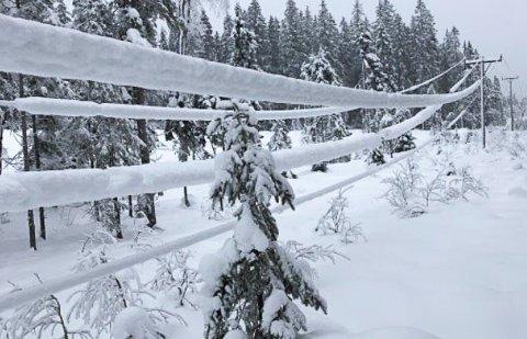 DÅRLIG KOMBINASJON: Tung snø og kraftig vind er en dårlig kombinasjon for kraftlinjene.
