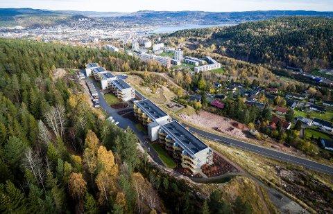 Fra Gjerpenkollen har du panoramautsikt over Drammensfjorden. Mange av kjøperne her fikk et ubehagelig innsyn i eiendomsbransjens mørke sider med på kjøpet. Dette avdekket Drammens Tidenes journalister i saken «Panoramautsikt til det grå eiendomsmarkedet».