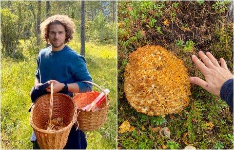 SJELDAN: Sindre Sætre fann den sjeldne blomkålsoppen i Viksdalen.