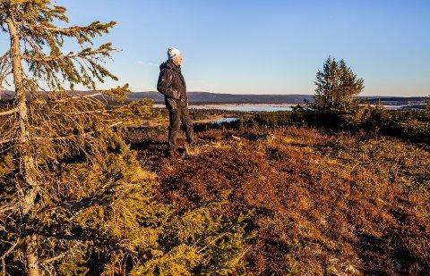 På denne delen av Melsjøhøgda i Lillehammerfjellet ønsker Telenor å reise en 12 meter høy mast, for å kunne forsterke signalene fra Elgåsen til Hornsjø-området.