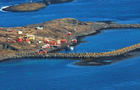 Flyfoto:  Av Skjærvær og havna utenfor Vega: Foto: Torild Wika.
