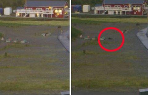 TIMELAPSE: Skjermdumpen til venstre er fra klokken 04.45. Bildet til høyre er klokken 05.30.