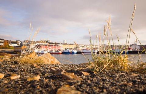 FIKK SOLA: Det var Øst-Finnmark som fikk det fineste været denne søndagen. Bilde fra Vadsø.