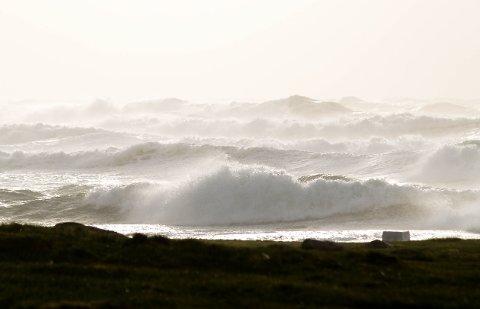 OBRESTAD: Obrestad havn, lørdag rundt klokka 15:00.