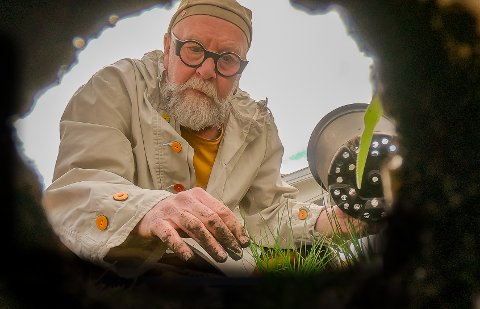 HELOMVENDING: Fra å hate hage til å elske det. Olaf Brastad kan spise det meste som spirer og gror i hagen sin nå. Plantingen bruker han mye tid på, men med god grunn.  - Jeg har egentlig nok gressløk, men vi planter en til- kan jo aldri få for mye av det, sier Brastad og ler.