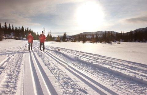 HVIT JUL: Ifølge Meteorologisk institutt er det bare å glede seg til jul hva været angår. Her fra Votndalen på Vegglifjell.