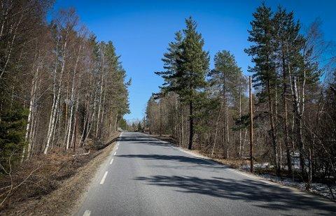 MYE TRAFIKK: Beboere langs Gamle Kongsbergvei har merket økt trafikk etter at nye E134 ble etablert med bomvei. Mandag skjedde en nesten-ulykke i nærheten av denne strekningen.