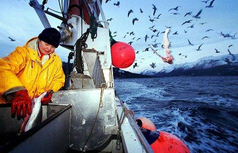 Fisker på Ullsfjorden. Nå krever de lokale fiskerne hevd på sine fiskeplasser slik at de blir hørt når havbruk etableres.