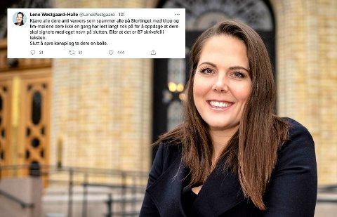 TVITRET: Da Lene Westgaard-Halle fikk samme mail rundt 250 ganger rant begeret over, og hun tok til Twitter for å lufte sin frustrasjon.