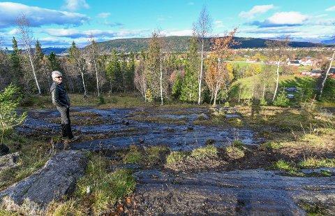 Per Pettersen har foreslått å lage en ny trasse, nord for tomta deres (ved trærne på bilde). Grunnen der eies av Amundsen.