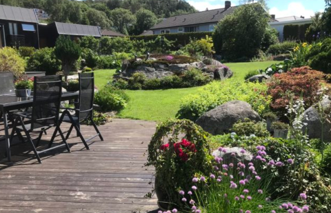"""Denne hagen i Sørsjøvegen er en av de påmeldte hagene til hageselskapets """"1000 åpne hager"""". Her er det fritt frem for å komme og kikke og få inspirasjon."""