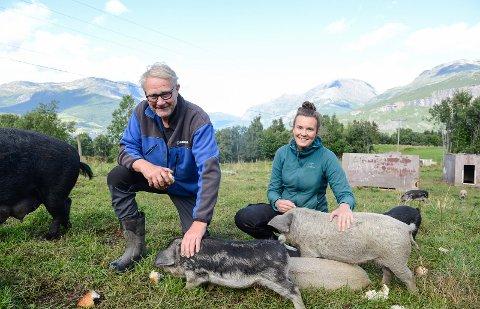 John G. Haugen og dottera Andrea Haugen deler på ansvaret for både stell og kos for sju purker og 40 smågrisar av typen ullgris på Nertrost fjellgard.