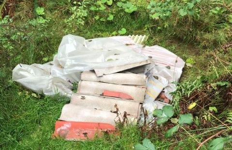 Forurensende: Kommunen har anmeldt forsøpling med eternittplater på to steder i Borge og Torsnes.