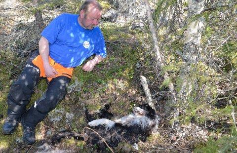 RYSTET: Jan Tore Nedgården er rystet etter den ene døde hunden etter den andre er funnet i skogen på Åsnes Finnskog.