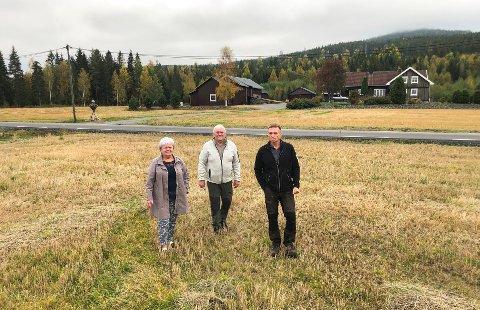 BEKYMRET: Kirsten Skyrud, Knut Enger og Tony Rybråten (t.h.) frykter for hvordan det vil bli på Galterud om motorveien kommer på sørsiden av Glomma. Rybråten bor på gården i bakgrunnen langs Kroksrudvegen.