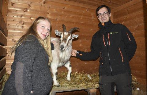 Malin Eline Olsen Støa og Simon Andersson Støa blir geitebønder ved siden av jobbene i henholdsvis kommunen og fylke.bilder: Marianne Østmoen