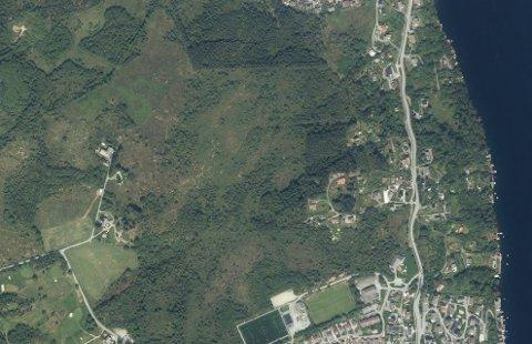 SKOG- OG MYROMRÅDE: Det er i dette området, nord for idrettsanlegget på Kolnes, at det planlegges nærmere 200 boliger.