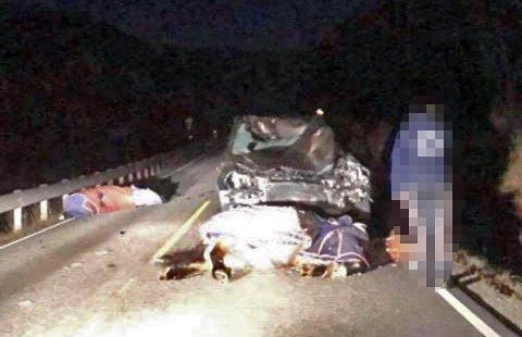 TRE HESTER DØDE: I ulykken på E6 i Kåfjord tirsdag kveld.