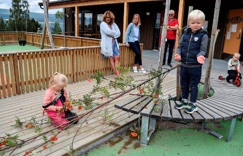 ØDELAGT: – Kanskje vi kan tape det, foreslår noen av ungene i Hov barnehage. Bak konstaterer ordfører Anne Hagenborg, styrer Linn Kirsebom og bygg- og vedlikeholdssjef Tore Venås at tuntreet som ble plantet i fjor er ødelagt.