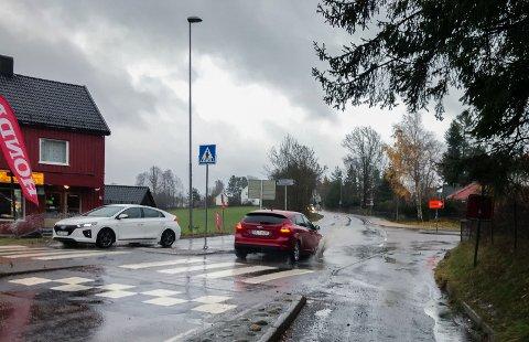 REGN I LANGE BANER: Søndag 11. november, da dette bildet er tatt, ble det målt 47 millimeter regn på målestasjonen i Ås.