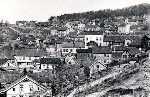 BØKELIA sett fra Bøkkerfjellet før brannen i 1902.