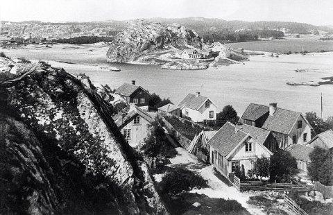 STEINSNES. Steinsnes og Fjellgaten sett fra Steinsnesfjellet i 1880-åra.