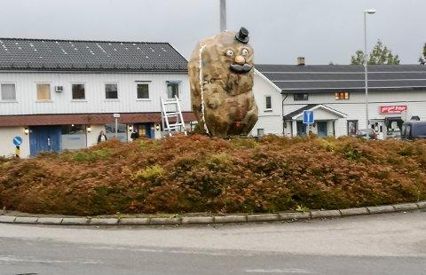 NY: Midt i rundkjøringen ved jernbanestasjonen og Parken kjøpesenter på Skarnes er det plassert en potetskulptur. FOTO: PRIVAT