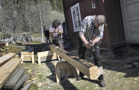 FURU: En 200 år gammel furustokk formes til på Krokan. Den skal erstatte en råtten stokk. Bjørn Strander (bak) , leder for bygningsavdelingen ved Norsk Industriarbeidermuseum og museumshåndverker Tore Widvey i full gang.   - Vi måtte vente med å gå i gang da det var mye snø her, men nå har vi endelig begynt jobben, forteller han. Et par jekker holder huset oppe. - En av de nye stokkene tilpasses her – ei furu som ble felt i fjor i Gransherad. Saktevoksen