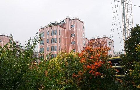"""REISER SEG: De rosa """"tårnene"""" utgjør skjelettet på boligbyggene på Rortunet."""