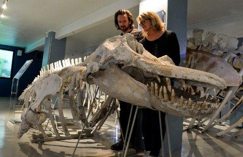 SKUMMELT: Museumspedagogene Atle Selnes Nielsen og Inger-Lise Ackenhausen forstår godt at barn synes dette skjelettet av en spekkhogger kan minne om en dinosaurus.