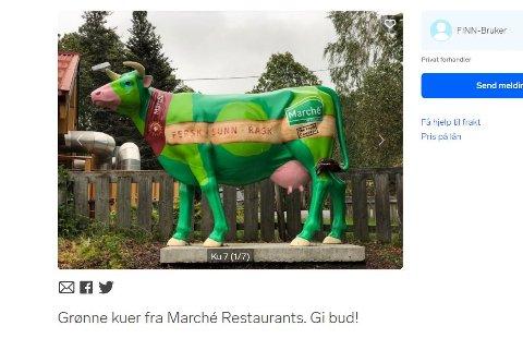 PÅ AUKSJON: De grønne kuene som har vært plassert utenfor Marché-restaurantene i Norge, er når ute på auksjon.