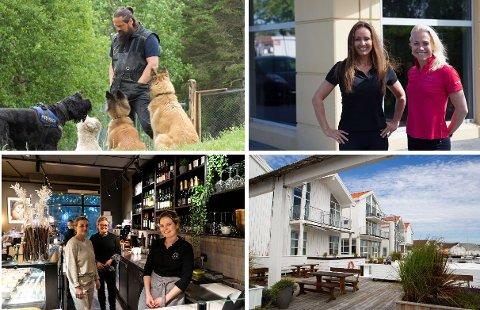 Sola Hundesenter, Impulz, Kafé Levi og Hummeren Hotel er blant dem som kommunen foreslår å gi kompensasjonsmidler til.