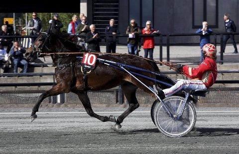NY STORSEIER: Føynland Anna og Tom Erik Solberg vant Momarken Oaks lørdag. FOTO: ARILD HANSEN