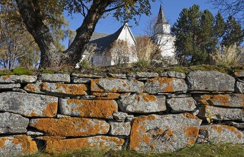 SKIFERPRYD: Messinglav på den gamle kirkegårdsmuren vitner om mange års bruk som sitteplass og utkikkspost for fugler. Den solbelyste skiferen med fugleskitt gir tilgang på både mineraler og gjødselstoffer.