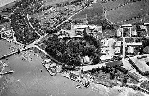 HISTORISK: Dette bildet av Teie er fra 1947. Nederst i høyre hjørne sees tydelig en smal bekk med et utløp i fjorden. Det er ikke klart akkurat hvor bekken gikk lenger oppe, men det er kanskje mulig å skimte en del av den på høyre side av hovedgården, ned mot trærne.