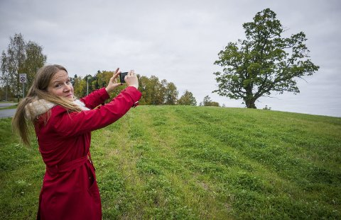Fanger lyset: Mari Sundli Tveit har tatt mange hundre bilder av den gamle eika og himmelhvelvingen over Ås de siste årene. Hun vil også ha presisert at telefonen hun bruker på dette bildet tilhører journalisten, hun glemte nemlig sin på kontoret. foto: Åsmund A. Løvdal